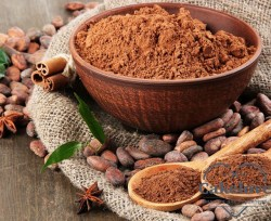 Best-Prices-Cocoa-Ingredient-Natural-and-Alkalized.jpg_640x640xz